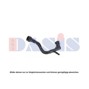 Schlauch, Zylinderkopfhaubenentlüftung -- AKS DASIS, BMW, 5 (E39), 3...