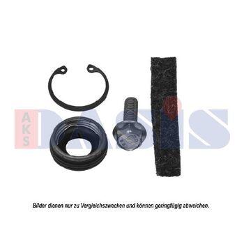 Dichtring, Kompressor -- AKS DASIS, Herstellereinschränkung: Visteon...