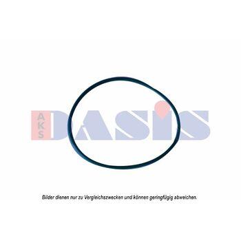 Anschlussflansch, Kompressor -- AKS DASIS, Ausstattungsvariante: 19X3,53...
